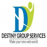 Destiny Group Services- SEO Promotion Company Delhi